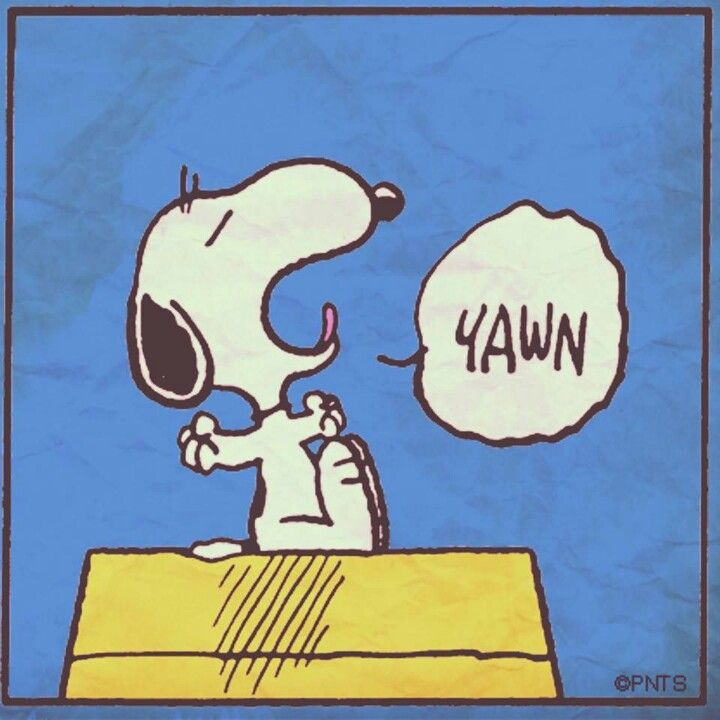 SNOOPY...ONE OF THE THINGS I LOVE