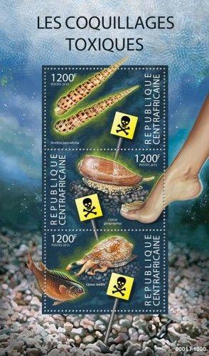 CA 15302 a Toxic shells (Terebra consobrina, Conus geographus, Conus textile)