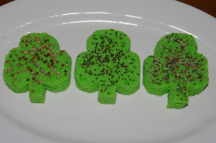 "Sponge ""chia pets"" - use shamrocks for St Patrick's Day, or cut other shapes"