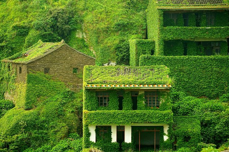 Abandoned fishing village on Gouqi island, Zhoushan, China. Photos by Jane Qing.