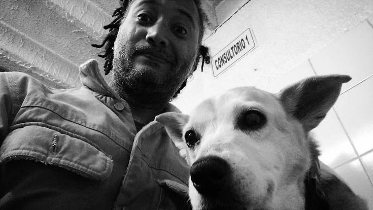 #bogota Acabando con la fase de desintoxicación la última dosis! Consultorio Veterinario San Francisco de Asís #veterinarian #dogs #doglovers #pets #petlover