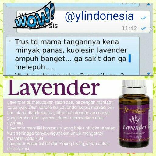 Testi_ lavender oil#testi lavender youngliving essential oil #youngliving #ylindonesia