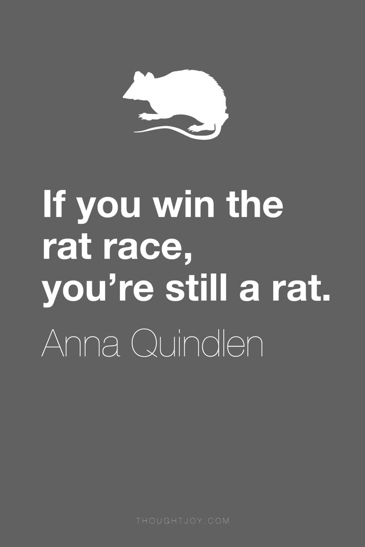 """If you win the rat race, you're still a rat.""  ― Anna Quindlen"