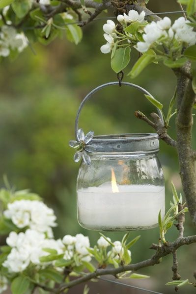 Mason jar candle amongst the blossoms