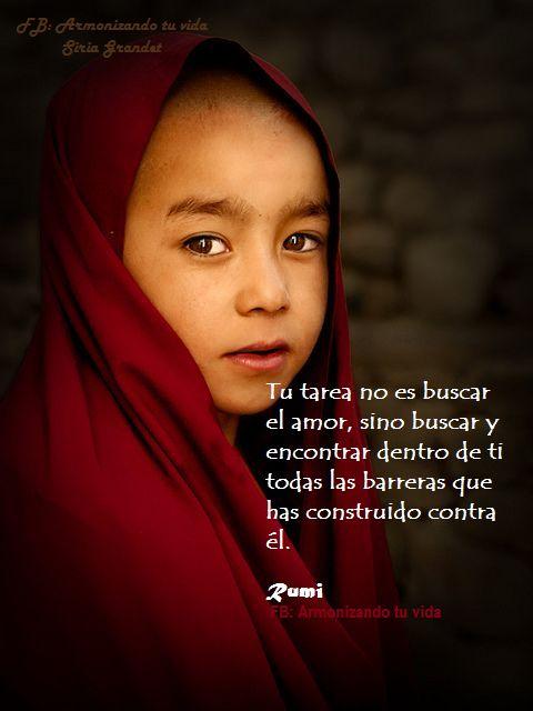 Tu tarea no es buscar el amor, sino buscar y encontrar dentro de ti todas las barreras que has construido contra él. (Rumi) www.armonizandotuvida.blogspot.com