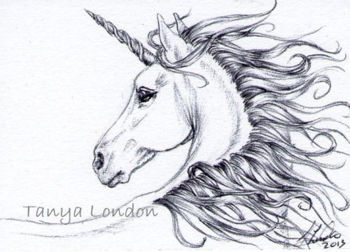 Unicorn Ballpoint Pen Drawing Original ACEO Art by Tanya London Follow my work on Facebook. www.Facebook.com/TanyaLondon.Art #Unicorn