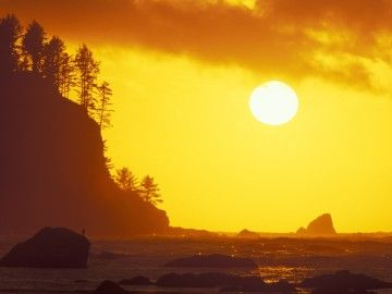 11 reasons why Olympic National Park is the most underrated place in the US