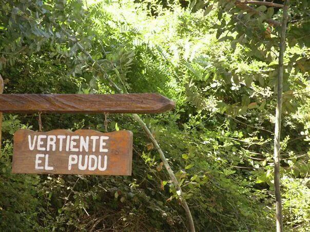 Caminando te encontraras con los nombres de los distintos arboles de la reserva del Parque Nacional.
