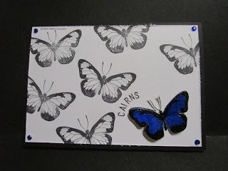 BaRb'n'ShEll Creations - Darkroom Door Blue Butterfly Cairns/Australia Cards - made by Shell
