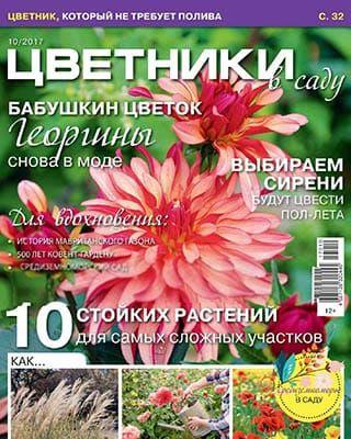 Цветники в саду №10 (2017)