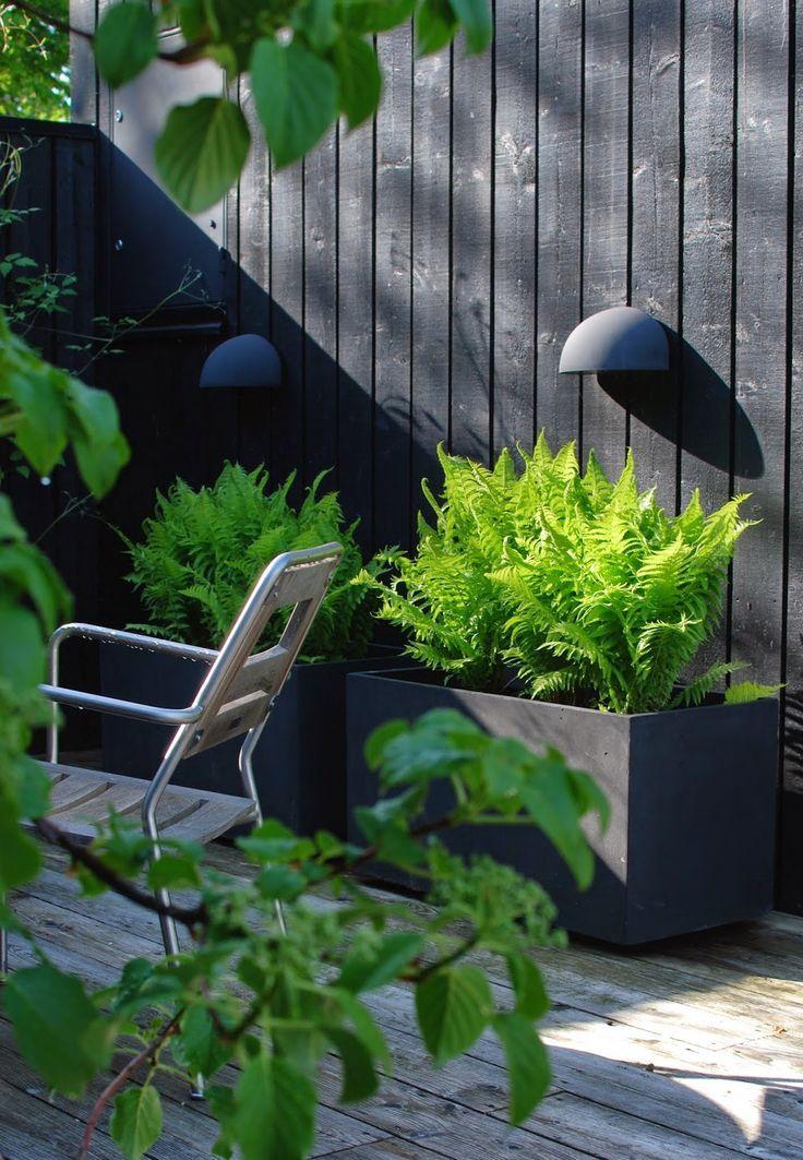 Toch is er een trend te bespeuren, de zwarte tuin wint steeds meer terrein. Zwarte tuinomheiningen en muren, zwarte tuinhuizen, zwarte tuinmeubelen, zwarte bloempotten...