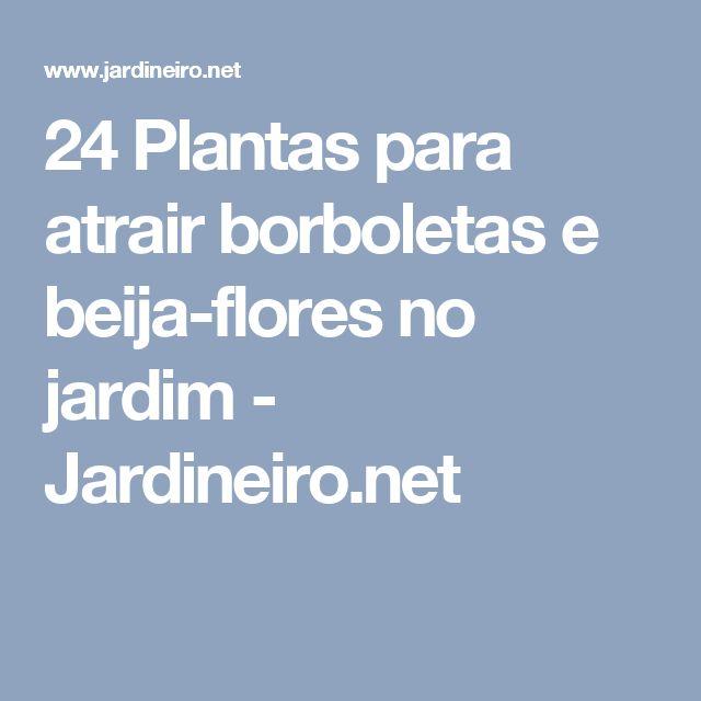 24 Plantas para atrair borboletas e beija-flores no jardim - Jardineiro.net