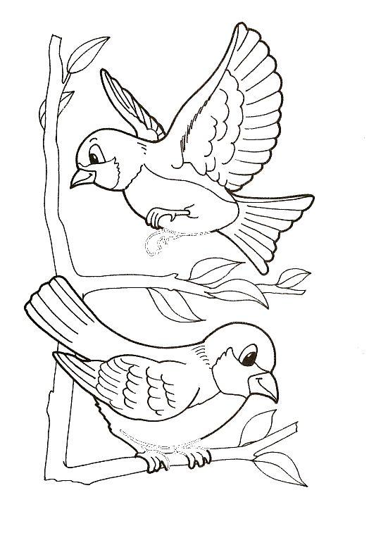 """Képtalálat a következőre: """"madáretető rajz"""""""