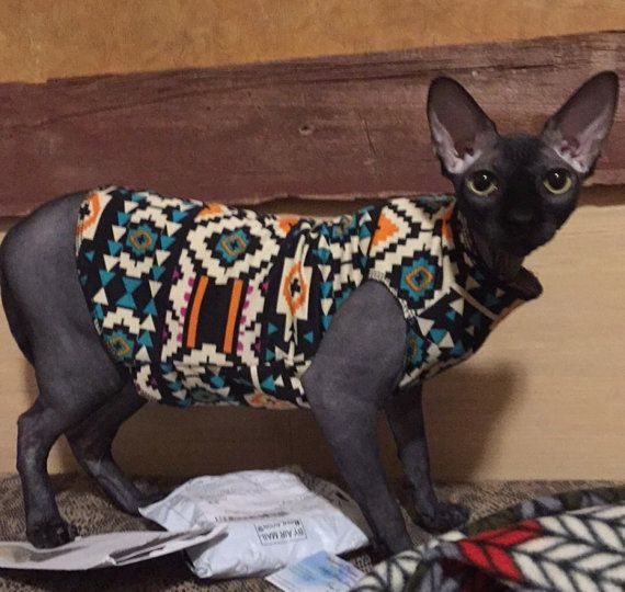 Southwestern Pride   Sphynx Cat Clothes Shirt by valygal on Etsy