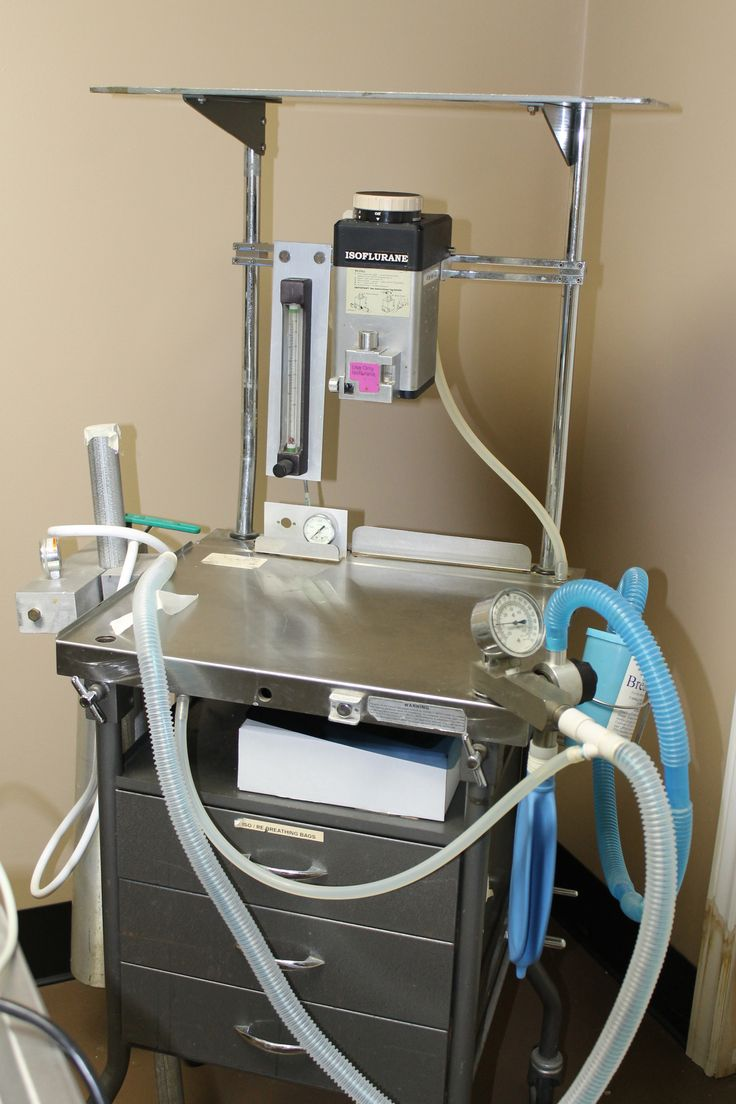 Equipment in the operating room of Kawartha Turtle Trauma Centre