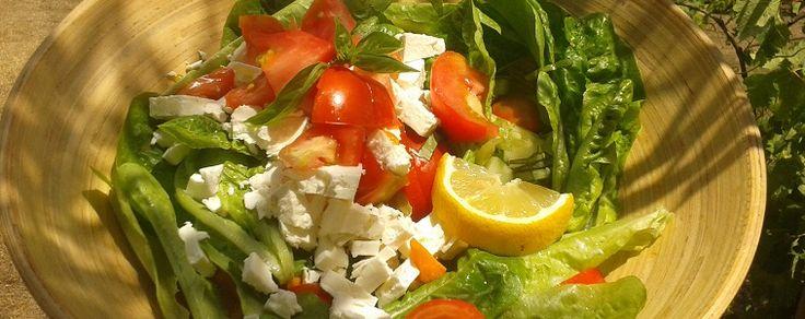 Anti-entzündliche Ernährung bei Übergewicht und Insulinresistenz