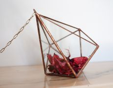 Terariu din sticla / suport pentru agatat / obiect decorativ handmade/ decaedru pentru plante