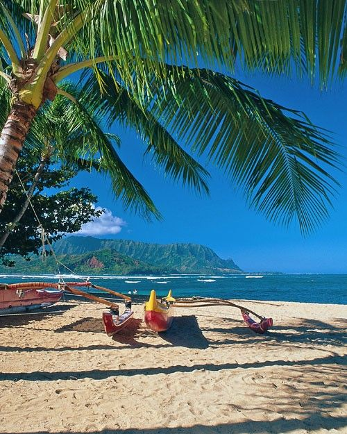 3620 best images about paisajes on pinterest for Hawaiian moon fish