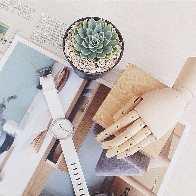 Classic Braun watch taken by @nathalisaoctavia   #thewatchco #braunwatches #braundesign  Follow @braundesign for more updates!
