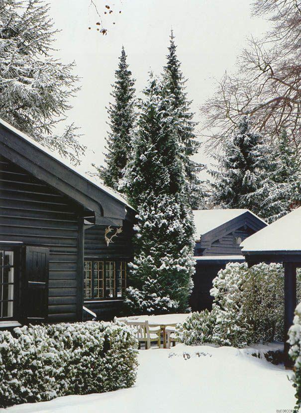 winter magic... time of reflexion