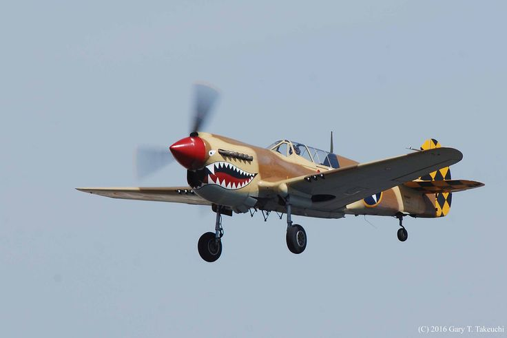 Planes of Fame Air Museum's Curtiss P-40N-5-CU Warhawk; s/n 42-105192, c/n…