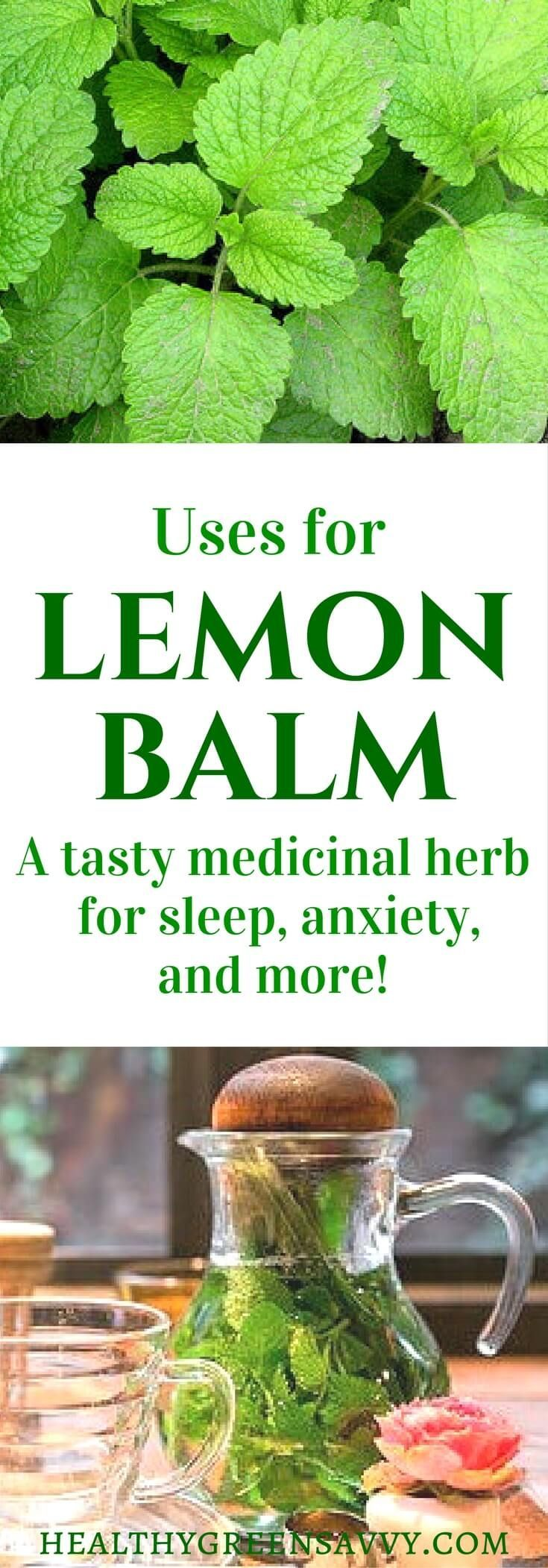 Lemon balm is my favorite herb for better sleep! This amazing plant deserves a place in your garden and herbal remedy arsenal. Click to find out more or pin to save for later. | lemon balm uses | garden | medicinal plants | sleep tea | herbal remedies | natural remedies | http://medicinalplantsnews.blogspot.com.co/