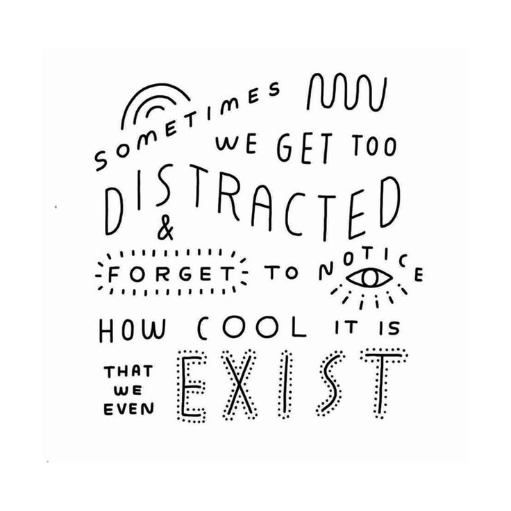 "Amelia Travis on Instagram ""Life is fleeting.  It's"