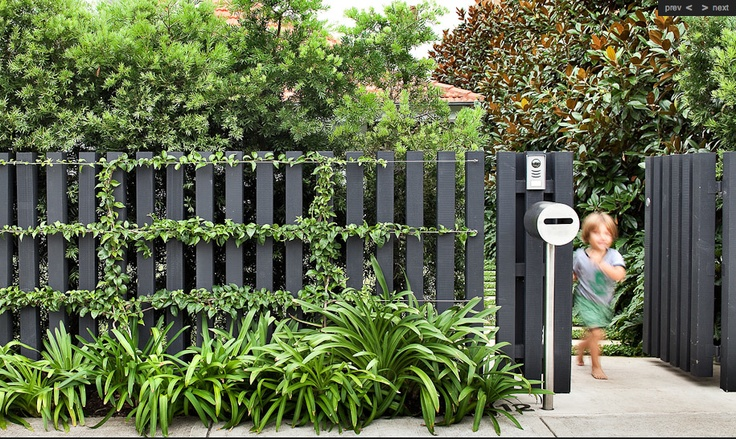 Statement front fence. Love the climbing jasmine!