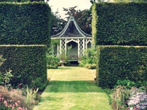 Hailsham Grange Garden | A Quintessential English Garden Treasure | Photographed by FitzGerald Photographic