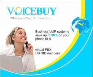 Business VoIP Systems: Voip Tech, Business Voip, Voip System, Voip Terminator