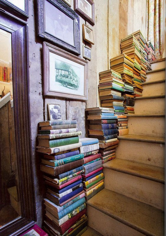 "books. Interesting idea. As much as I find my daughter on our stairs reading, I'm thinking ""why not""."