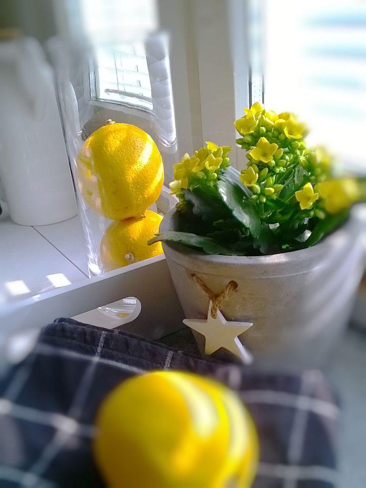 Kevään väriä
