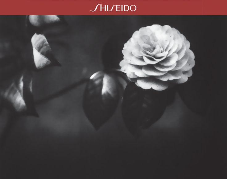 Cosa si nasconde dentro un fiore che sta per sbocciare? #beautyinyou www.shiseido.it
