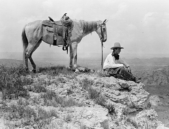 A history of horses in the american wild west