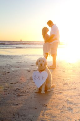 sunset shoot with Penny!