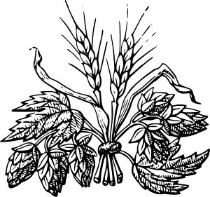 Beer ingredients : Hop and Barley by @bf5man, Hop and Barley source: British Library https://www.flickr.com/photos/britishlibrary/11062792186