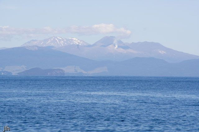 If you look closely in the background you can see a little geothermal activity. This photo was taken on Lake Taupo, New Zealand, February/March 2015.