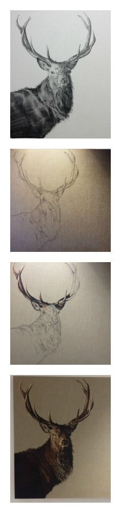 How to paint a stag by Tony O'Connor whitetreestudio.ie