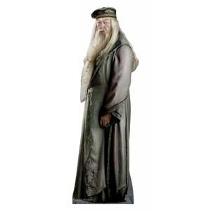 From his wand, long hair and beard, and robe to his blackened hand and Deluminator, this is everything you need for a Dumbledore costume.