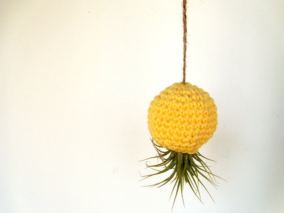 Hanging air plant holder made to look like an upside down pineapple :)