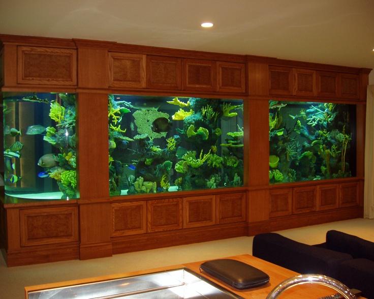 686 best aquarium ideas and design images on pinterest | aquarium