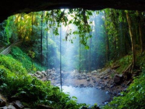 Crystal Shower Falls is one natural attraction in New South Wales's Dorrigo National Park in Australia.