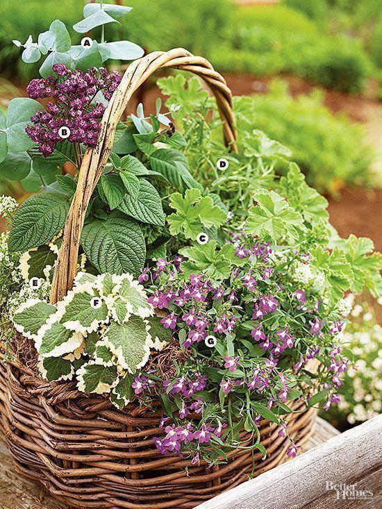 A Gallery of Beautiful Container Garden Ideas Garden ideas pation backyard diy