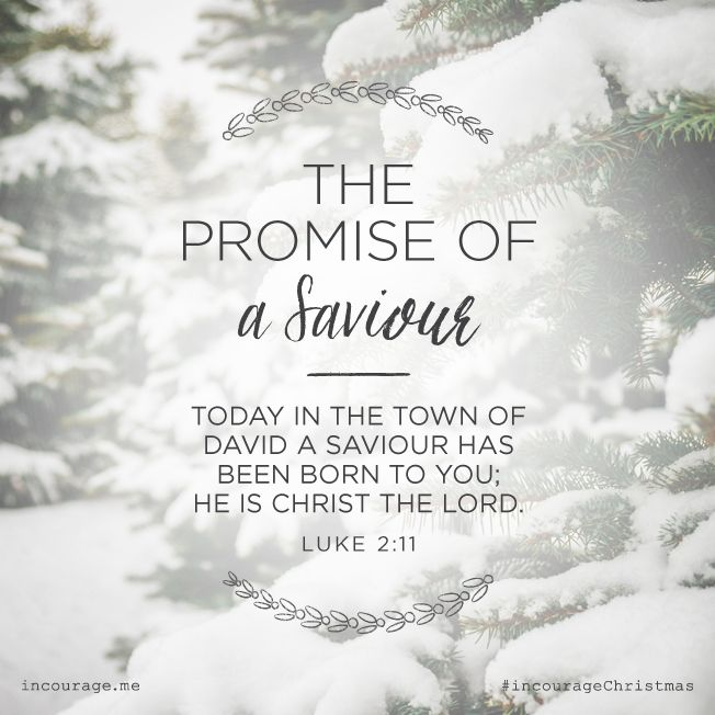 """Day 2- The Promise of a Saviour // """"Today in the town of David a Saviour has been born to you; He is Christ the Lord.""""  {Luke 2:11} // 25 Days of Christmas Promises #incourageChristmas"""