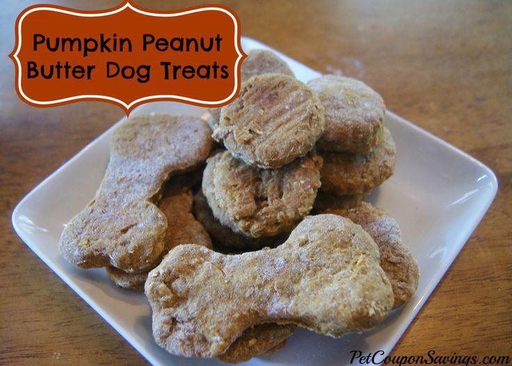 Homemade Pumpkin Peanut Butter Dog Treats. Ready for Fall? These treats are sure to please every pup! http://petcouponsavings.com/homemade-pumpkin-peanut-butter-dog-treats/ #homemade #diy #dogs #pumpkin