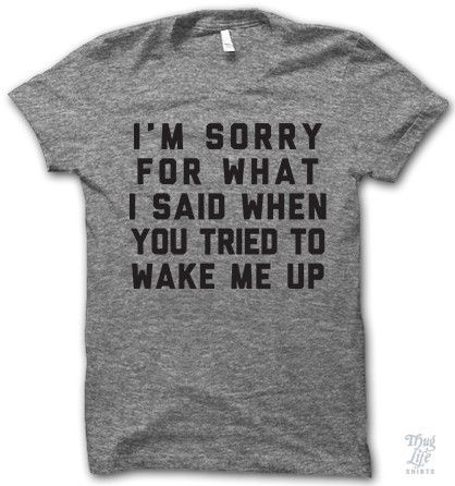 I'm not actually sorry but it's expected to apologize anyway. Moral of the story: don't wake me up!