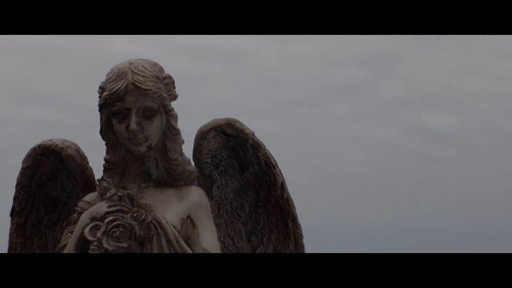 Tony Joe  White 🎸 Aint Goin Down This Time - YouTube HD