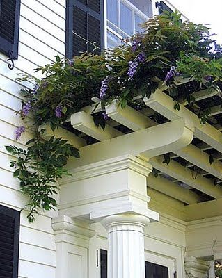 This is beautiful. Always put a sheet of plexiglass under the wisteria to keep plant dropping off of the landing and the people who enter!
