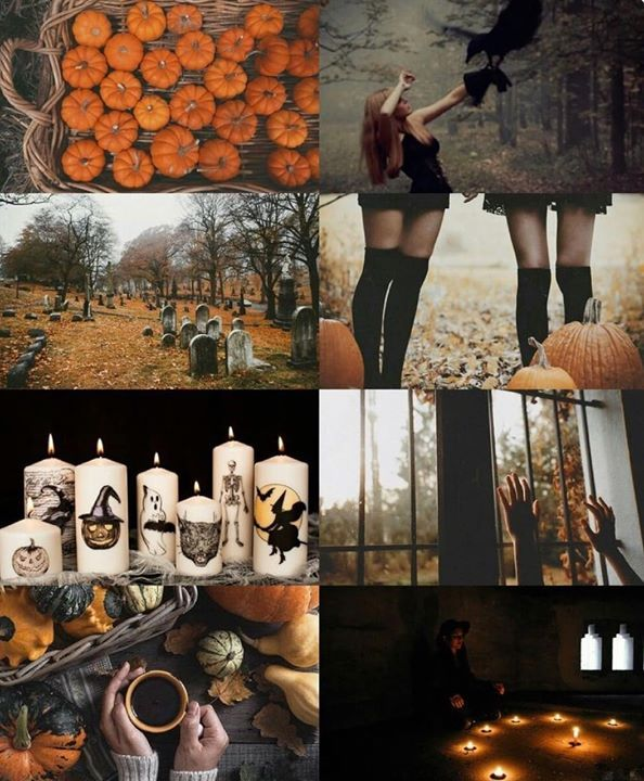 Fall Season halloween autumn fall october
