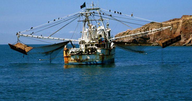 A diferença entre pesca pelágica e demersal. Os termos pelágico e demersal se referem às práticas de pesca conduzidas em diferentes partes do oceano. Os nomes correspondem às zonas onde a prática ocorre. Dependendo da profundidade do local selecionado, o método utilizado e as espécies dos peixes se alteram.